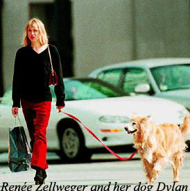 renee-zellweger-ad-her-golden-dylan-copy