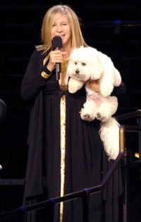 barbara-streisand-and-her-dog-sammie-on-tour-with-her-oct-4-06
