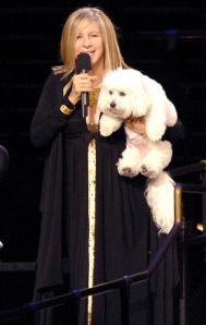 Η Barbara σε περιοδεία με τον σκύλο της...