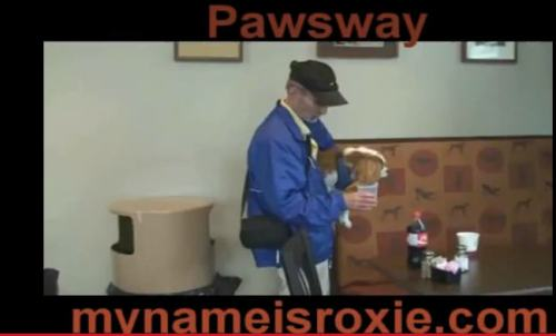 Roxie and Mel at Williams Pub Pawsway.jpg no 2