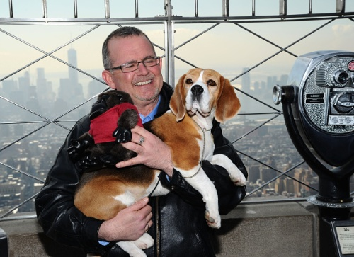 """Best In Show Winner"" Miss P Of The 139th Westminster Kennel Club Dog Show Visits The Empire State Building"