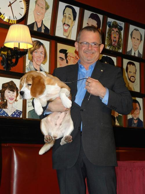 Miss P Beagle Best in Show 2015 and her own at Sardi's Restaurant