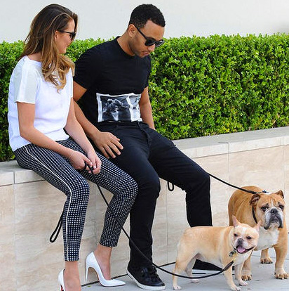 Model Chrissy Teigen and singerhusband John Legend with french bulldogs Pippa and Puddy