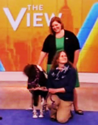 National Therapy Animal Day Mini horse and Mary Margaret Callahan on the View Representing Pet Partners