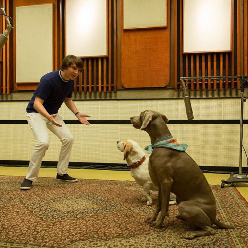 Brian Wilson and his dogs Banana and Louie pet sounds